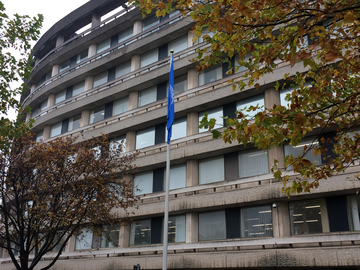 The UN flag flying at Borough Hall in Bedford